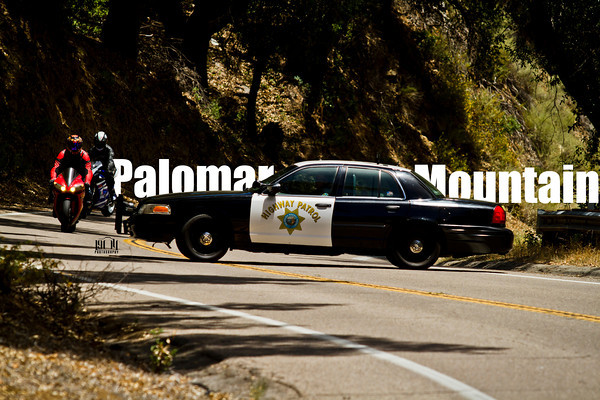 Palomar Mountain June 15, 2014