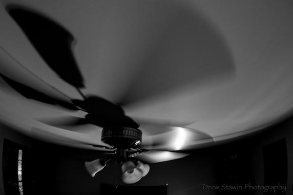 Still Life - 8/3/19 - lamp fan