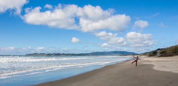 San Fran and JTree 2014