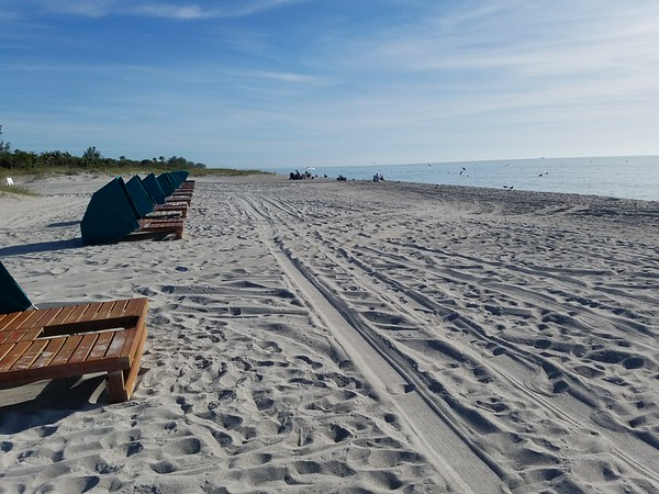 Florida_Trips