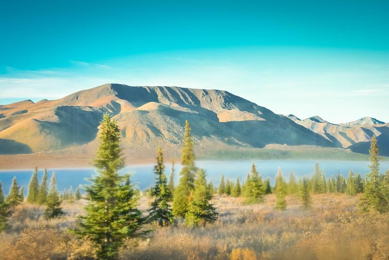 Denali-National-Park-49.jpg