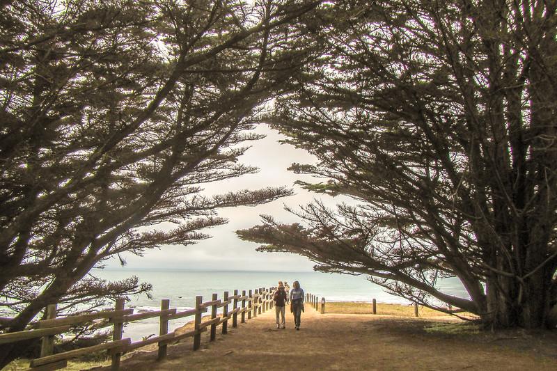 *T.Davids-coastal_hike-29.jpg