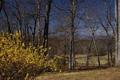 Mill Spring Spring