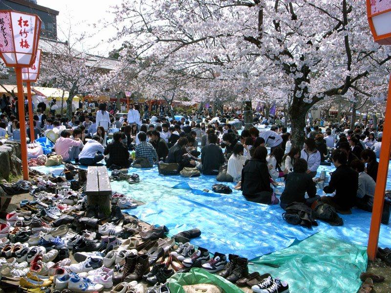Maruyama-Koen Hanami Party with Shoes