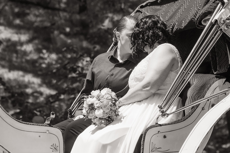 Central Park Wedding - Priscilla & Demmi-31.jpg