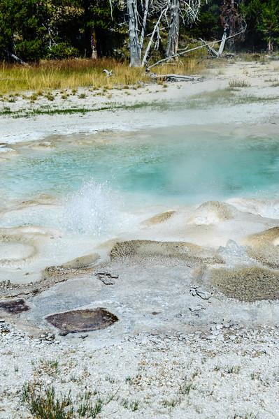 20130816-18 Yellowstone 174.jpg