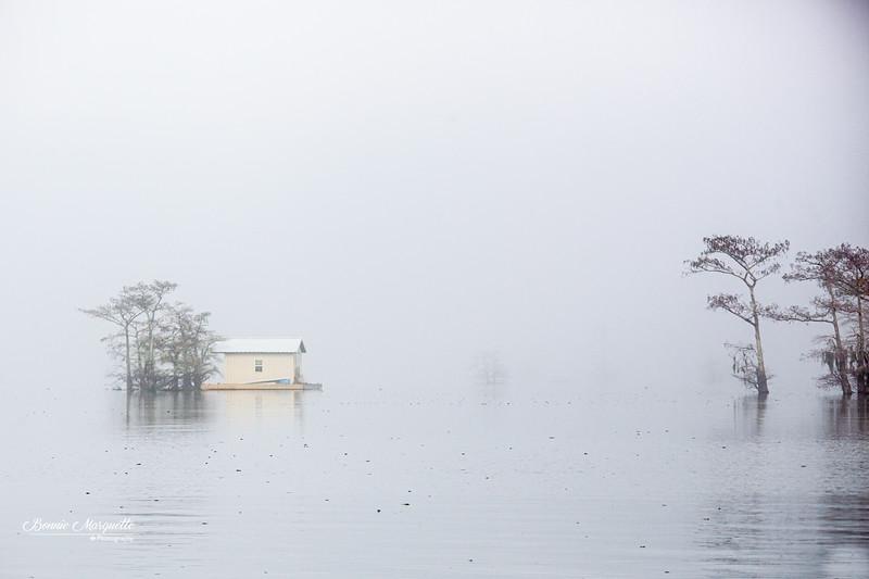 Henderson Swamp 1 16 20-122.jpg