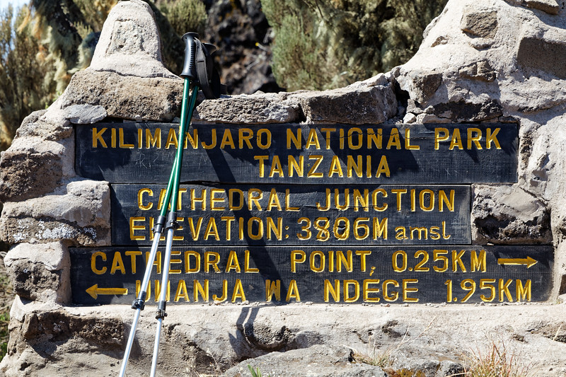 Kilimanjaro Ascent Day 4 - Hike to Shira II Camp