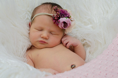{Olivia} newborn