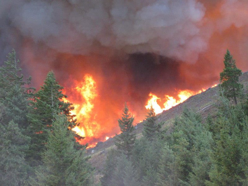 Douglas Fire 2.jpg