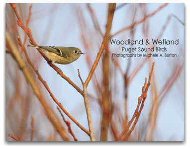 Limited Edition Woodland & Wetland Book