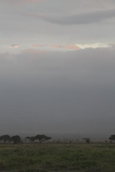 Kenya 2019 #2 1637.JPG