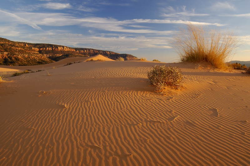 Coral Pink Sand Dunes - SS - 2294009 - KCOT.jpg
