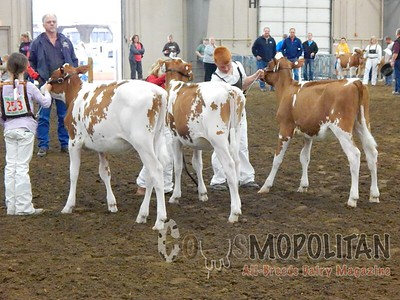 OH Spring Dairy Expo 2016