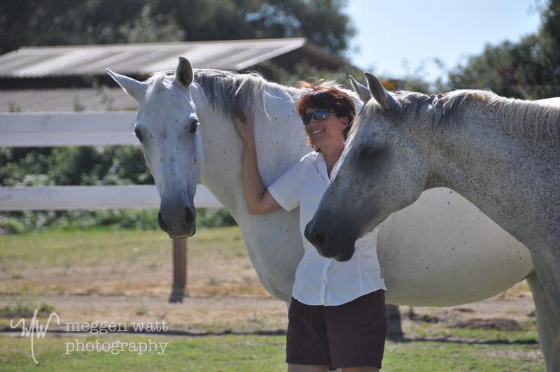 EB&Horses-151.jpg