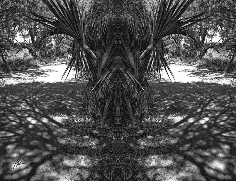 9810-Edit-Edit.jpg