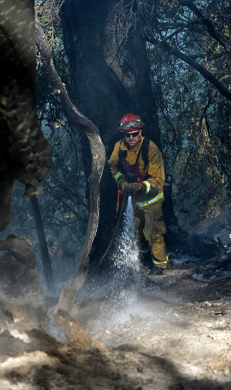 . Firefighter Randy Browning hoses down a hot spot of  a fire near Pollack Pines, Calif., Monday, Sept. 15, 2014. The fire, which started Sunday has consumed more than 3,000 acres and forced the evacuation of dozens of homes.(AP Photo/Rich Pedroncelli)