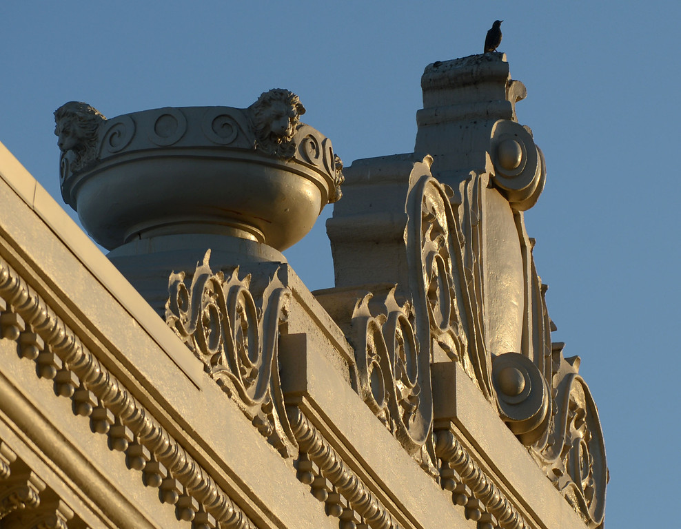 . A bird finds a handsome perch atop the restored California Theatre photographed in Pittsburg, Calif. on Tuesday, Jan. 15, 2013. The opening gala will take place on Jan. 19 with tickets,  priced at $150 per person.   (Susan Tripp Pollard/Staff)