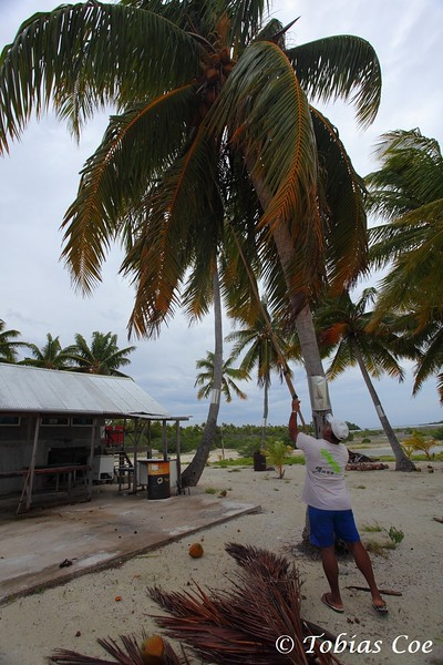Tahiti (Anaa) (32).JPG
