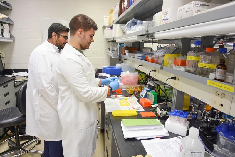CHIRP 2019 labs024.JPG