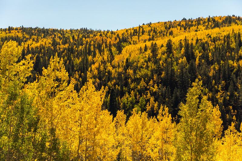 Colorado19_5D4-1127.jpg