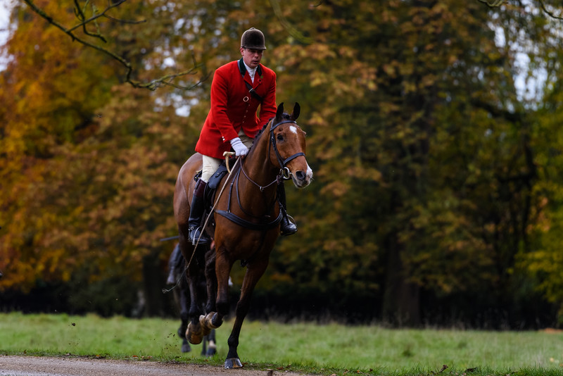 Fitzwilliam Opening meet Nov 2019-340-225.jpg