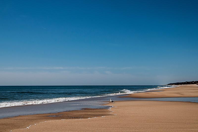 sd_mtk_s_edison_beach003.jpg