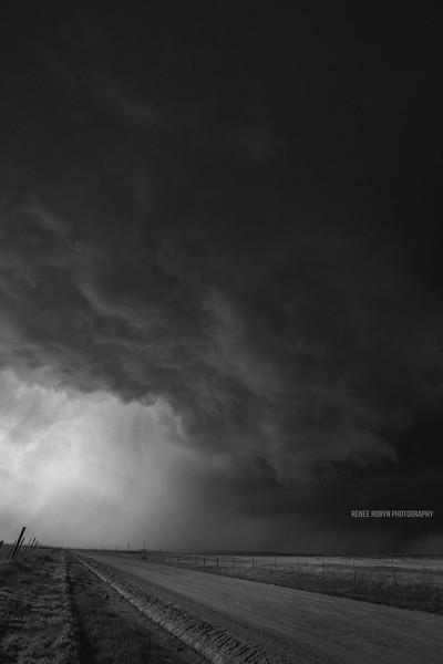 Storm_W0C5244bwWEB.jpg