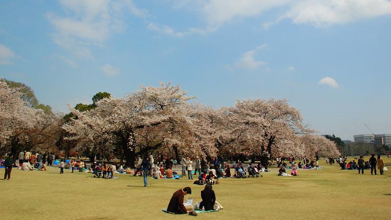 32-Japan07_1486.JPG
