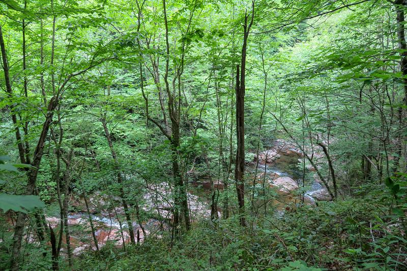 Bridges Camp Gap Trail -- 4,080'