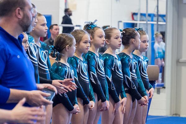 1-12-2020 Arlington Aerials Gymnastic Meet