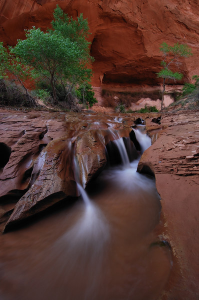 (2008 April 15-18) Coyote Gulch, Glen Canyon National Recreation Area, Utah.