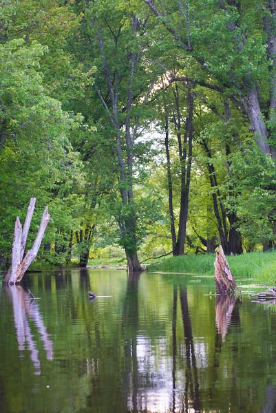 2018-05-20 Kayaking - Wallkill River-untitled (24 of 64)-008.jpg