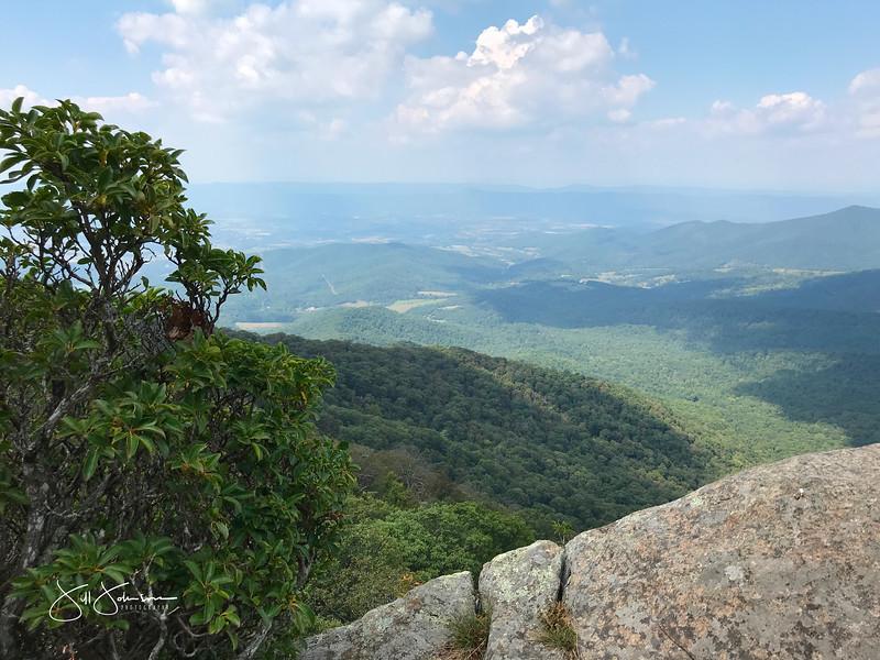 at hike-8964.jpg
