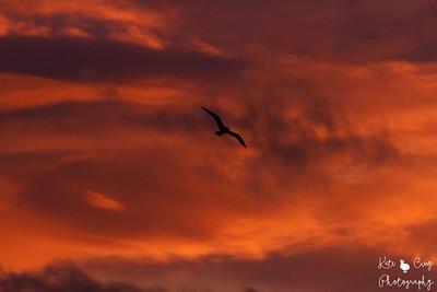 22.03.19 blog post - Sunrise Over The Gorbals