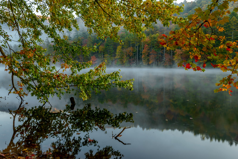 NC-MORNING MIST-0094.jpg