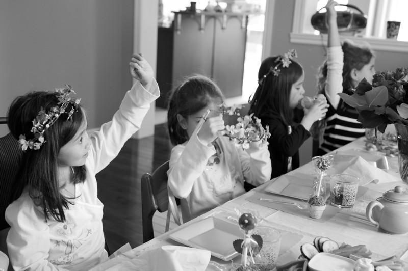 Barac Tea Party_2012-4500.jpg