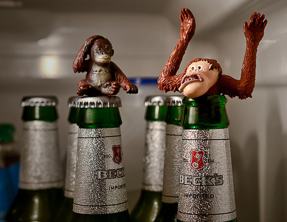 0110 zany  The little guy had seen it too many times before, once his uncle got into the beer there was no telling what trouble would follow.  (Why do strange things always happen in my refrigerator?)