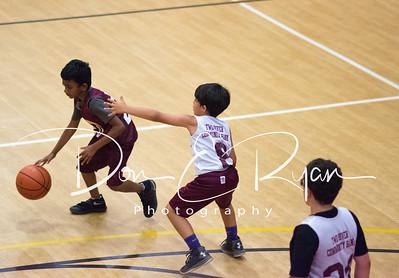 MSC Basketball