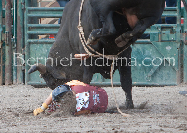 Bull Riding - Friday