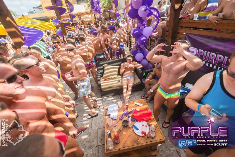 2014-05-10_purple06_705-3255139424-O.jpg