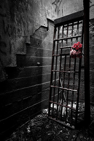 Gates and Roses ( and other things)
