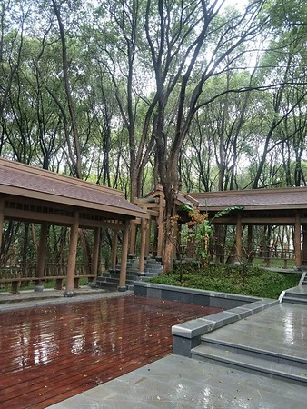 New wood service facilities in East Lake Listening tao Scenic Spot东湖听涛景区新增木质服务设施