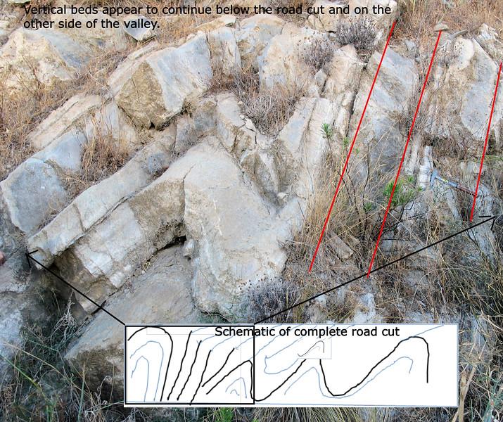 Roadside cut of alabaster folds
