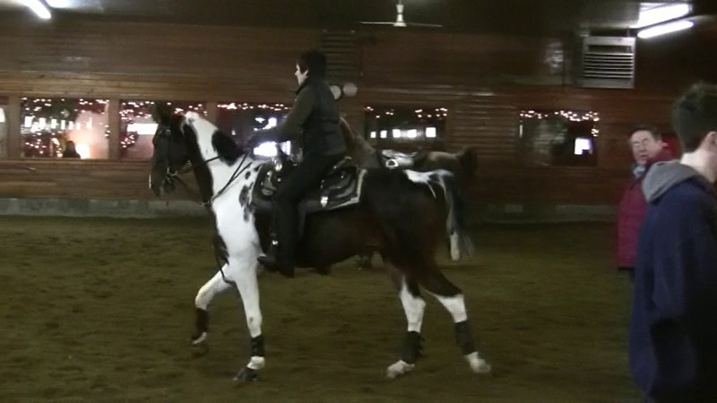"""A short video of """"Pinto"""". A five year old bay and white pinto from Arizona stabled at Knollwood Farm. He is just starting to learn riding commands."""