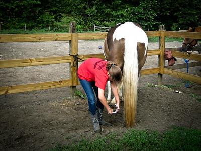 Horse_Camp