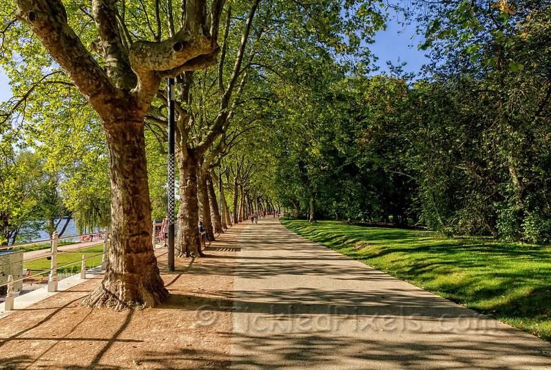 Allier Park