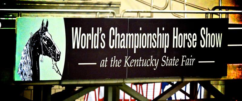 2015 World's Championship Horse Show