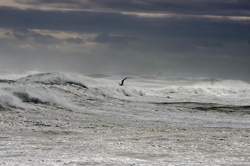 N Hampton high tide 600-33.jpg