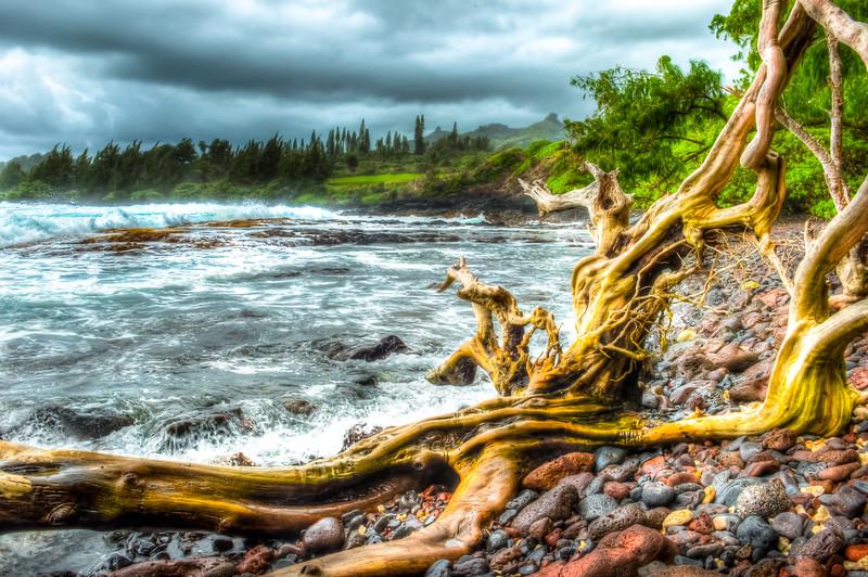Maui-1381-HDR.jpg